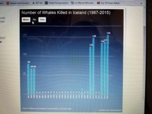 The number of fin whales killed from 1987 to 2015.