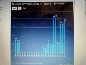 The total number of whales (minke and fin) killed from 1987 to 2015.